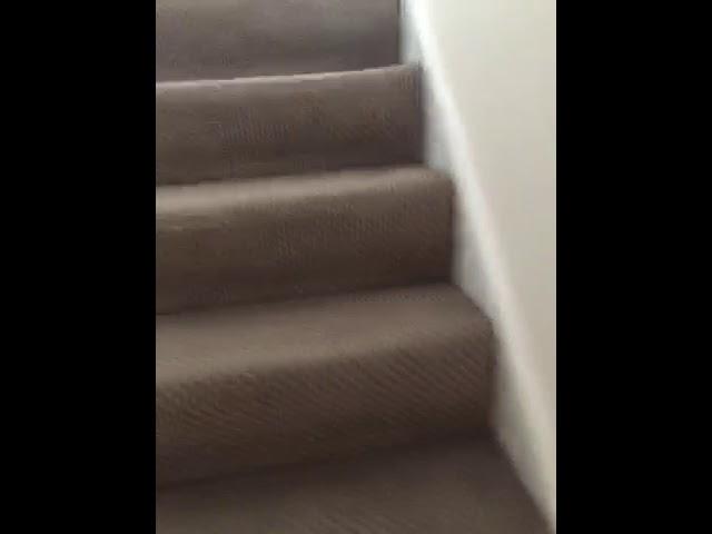 Video 1: Lounge