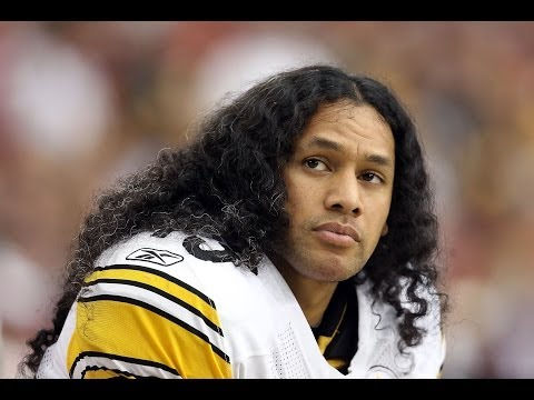 Troy Polamalu Highlights