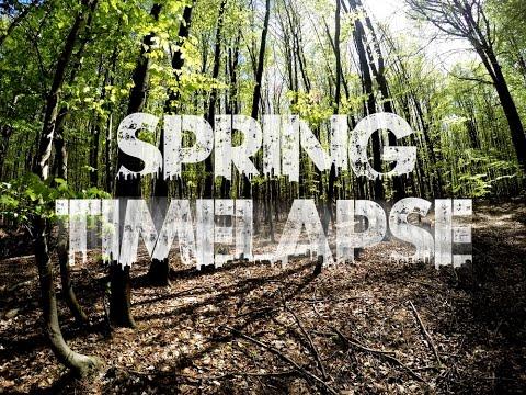 Trailer #44: Spring [GoPro: 4K Timelapse]
