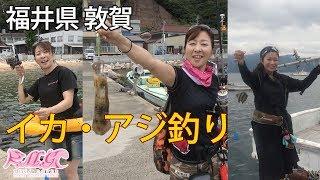 サビキでアジ爆釣⁉KMG イカ・アジ釣り 福井県 敦賀市