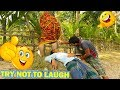 Must Watch New Funny Video 😂😂 Top Village Comedy Videos 2018 😂 HD FUNNY / Episode 24