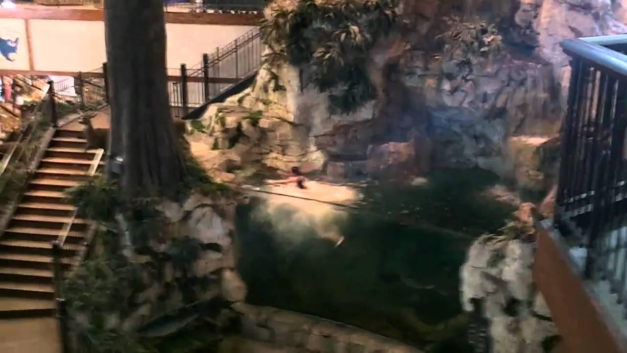 Jumping in Bass Pro Fish tank! (Estero High School 2011) - YouTube