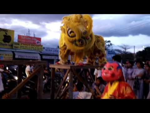 Múa lân Xuân Quý Tỵ (Video quay bằng BlackBerry Z10) - www.mainguyen.vn