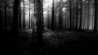 Lysithea - Here At The End Of All Things & Aokigahara
