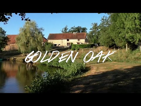 Carp Fishing In France At Golden Oak Lake