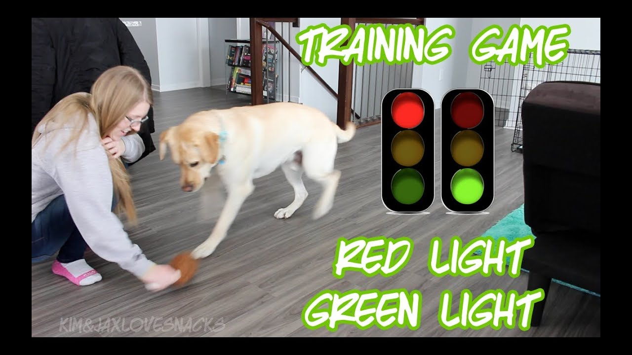 Red Light Green Light | Training Game - YouTube