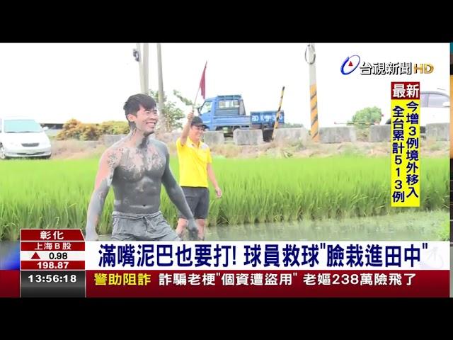 農民獨創水田排球 吸引近百人報名參加