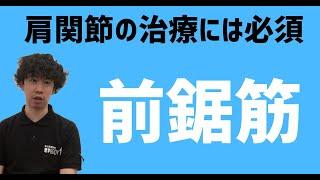 【働き方改革HP】 https://gekokujyoublog.com/ ☆LINE登録で「筋膜」に関する動画を3本プレゼントします! 公式LINE@➡︎https://line.me/R/ti/p/%40kcu5117z...