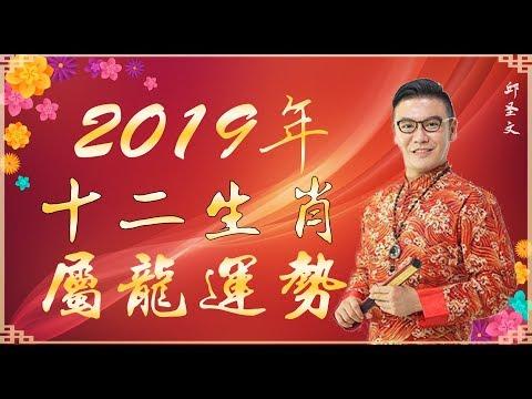 2019年十二生肖属龙运势