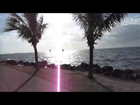 South Florida, Matheson Hammock Park