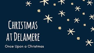 Christmas at Delamere Forest