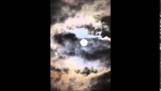 Stranded - Roger Matura