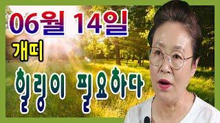 2020년 06월 14일 오늘의 운세 개띠 힐링의 시간이 필요하다 수미산당 구슬보살  010-6622-568…