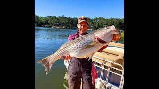 Striper fishing on Clarks Hill Lake