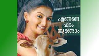 നിങ്ങൾക്കും തുടങ്ങാം ഡയറി ഫാം Guidelines To Start A Dairy Farm In Kerala