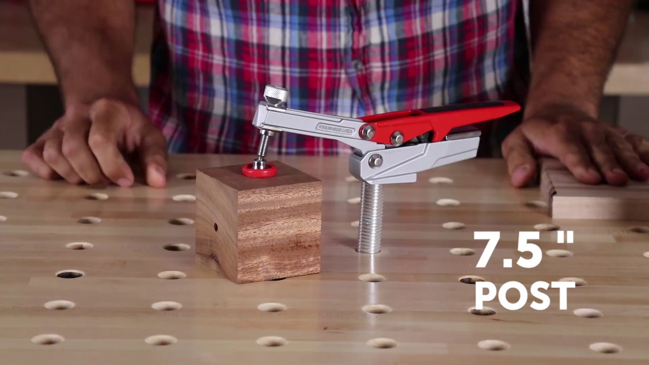 Butcher Block Dog Table and Auto-Adjust Clamps