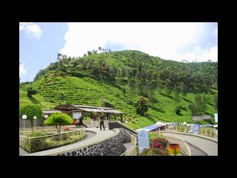 puncak---jawa-barat-|-tempat-wisata-di-indonesia