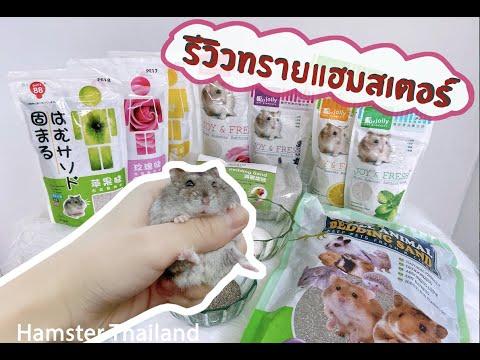 Review ทรายอาบนำ้แฮมสเตอร์ ทุกยี่ห้อ By Hamster Thailand