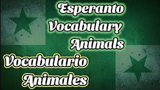 Esperanto Vocabulario Animales / Vocabulary Animals #1
