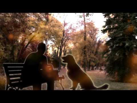 Осенний Пес. Рассказ
