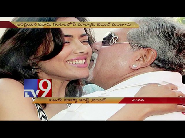 Vijay Mallya arrested in London, Granted Bail - TV9