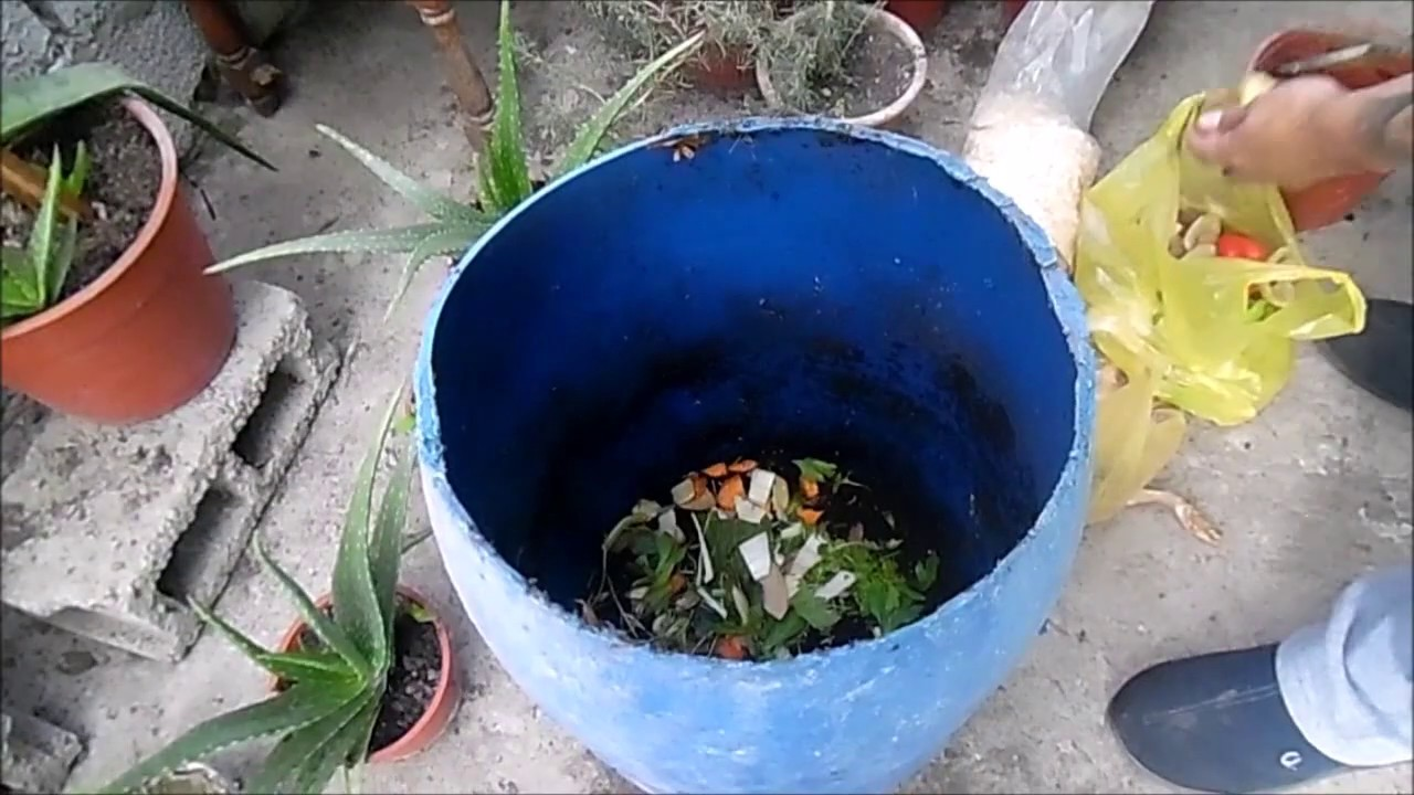 Como hacer composta casera de forma f cil fertilizante casero youtube - Como hacer compost en casa ...