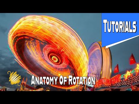 Exercise 101: Anatomical Position, axis of rotation and planes of movement