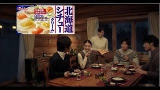ハウス食品 北海道シチュー「北海道が大好きだ・冬」篇