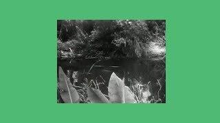 Download lagu Sunni Colón - Technicolor