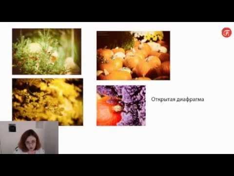 Фотография от настроек до идеального кадра. Уроки фотографии. Онлайн фотошкола. Дарья Булавина