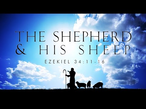 The Shepherd and His Sheep
