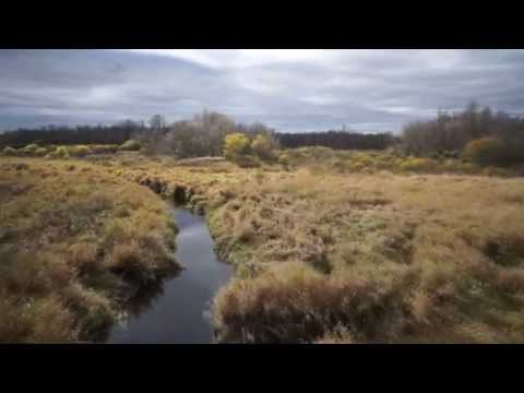 Country Estate/Ottawa UAV Imaging