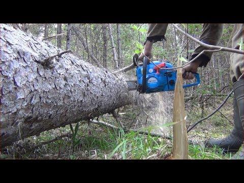 Заготовка дров в
