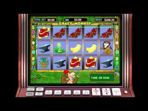 Касаются секреты игровых автоматов Crazy Monkey и их линий.Если вы намерены с высоким постоянством получать призовые деньги, играйте следующим образом: 10 спинов на 1 линии; 3 спина по 3 линиям;.Железногорск (Красноярский край)