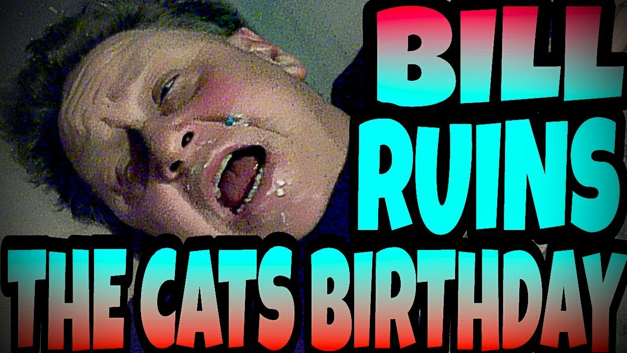 Bill Ruins The Cat S Birthday Youtube