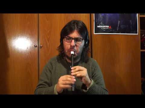 """""""Negra Sombra"""" (Rosalía de Castro/Xoán Montés Capón) Tin Whistle D"""