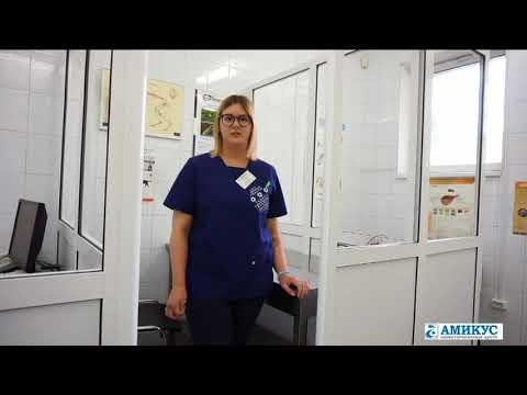 Ассистент ветеринарного врача - Амикус