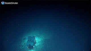 Camera 2: Exploring Deep-sea Habitats off Puerto Rico & the U.S. Virgin Islands