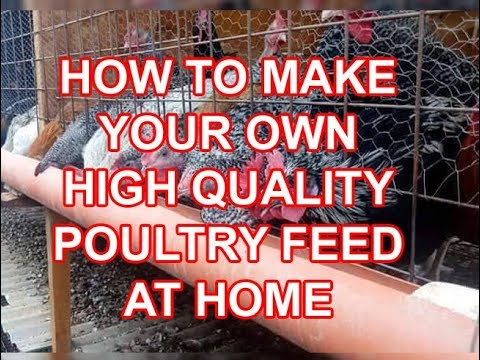 How to make your own poultry feed | Mix