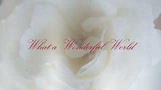What a Wonderful World Lyric Video by ViVA Trio