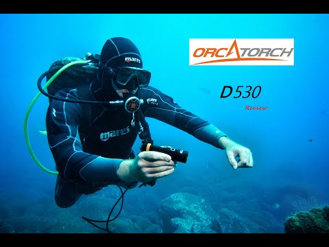REVIEW | Orcatorch D530
