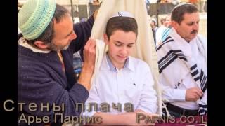 Бар-Мицва в Иерусалиме у Стены Плача(Превратите Бар-Мицву вашего сына в незабываемое событие для всей вашей семьи. Я предлагаю Вам увлекательн..., 2015-07-19T13:22:00.000Z)