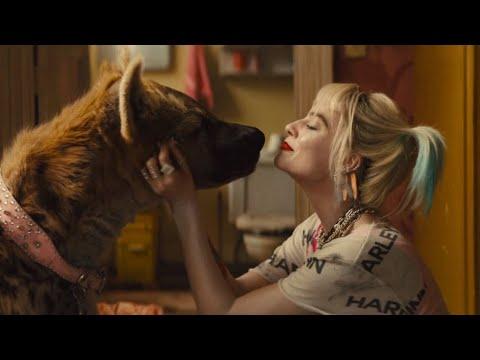 Birds Of Prey E La Fantasmagorica Rinascita Di Harley Quinn - Nuovo Trailer Ufficiale Italiano
