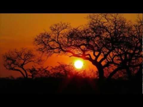 ISMAEL LO - AFRICA