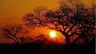 mqdefault Protea Banks South Africa 2017 Nativo972