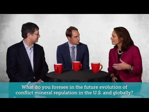 Conflict Mineral Experts' Panel: The Future of Conflict Mineral Due Diligence