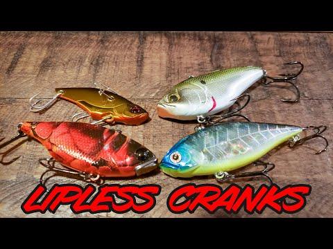 4-easy-lipless-crankbait-tips-for-fall-bass-fishing!