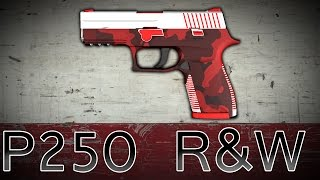 P250 | R&W | CSGO Weapon Showcase