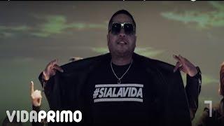 Смотреть клип Tempo, Gustavo Laureano & Elysanij - Si A La Vida