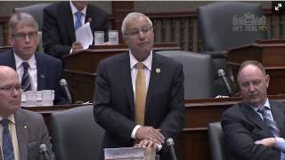 Auditor General Catches the Government Again: Fedeli